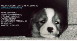 Pomóżmy zwierzętom ze schroniska!!!